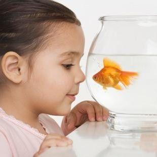 girl fish